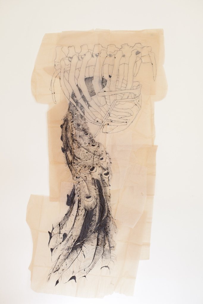 Claire Marsh, Dwelling, 2012, indian ink on sewing paper, 154x182cm, photography by Kate Pardey